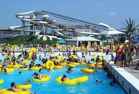 swimming pool management
